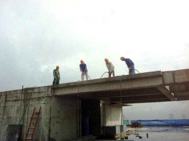 xử phạt cắt ngọn công trình 8b lê trực xây dựng sai giấy phép